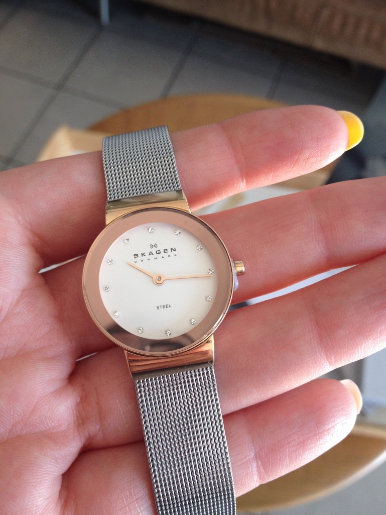 Skagen Steel Watch