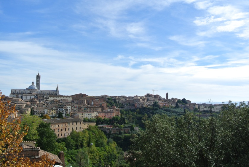 Siena from the fort